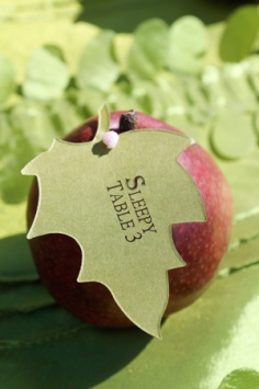 apple-place-cards-cathy-lee-photography