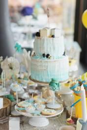 pims cake design wedding cakes (2)