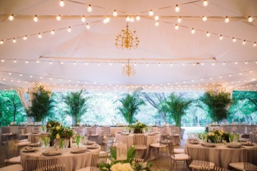 Woodend-Sanctuary-Maryland-Wedding-Joe-Foley-Photography-74-550x367